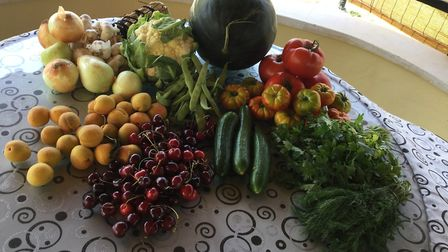 The fruit purchaed by Emma Razter at the farmers' market while on holiday. Picture: Emma Ratzer.