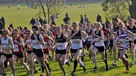 Cross country runners on Hampstead Heath