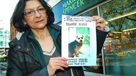 Owner Shelley King has been handing out posters appealing for information about missing pet Archie.