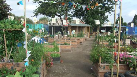 Core Arts have won a City of London award for a horticultural project