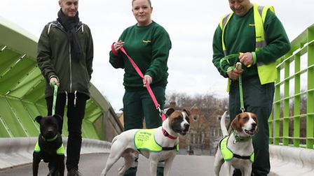 Volunteers Ben Kennedy, left, Kelly Edmondson and dog warden T with some of the stray dogs to be reh