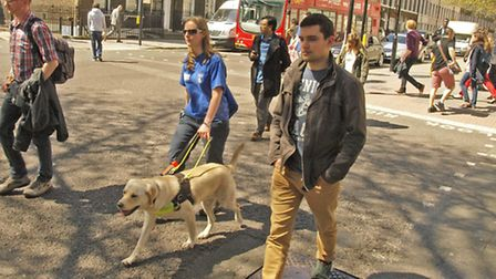 Guide dog trainer Laura Skinner puts trainee dog Nan through his paces. Picture: Tony Gay