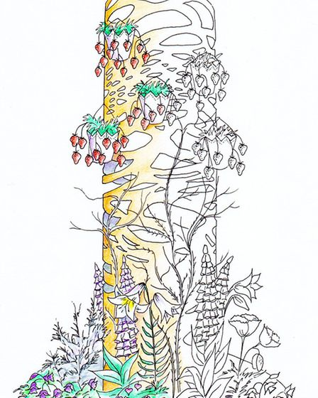The illustration of Beyond Reach submitted to judges by Alison Worster.