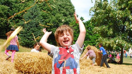 Kenwood Summer Garden Fete 04.08.13. Children play in a big pile of straw on the pasture ground, pic