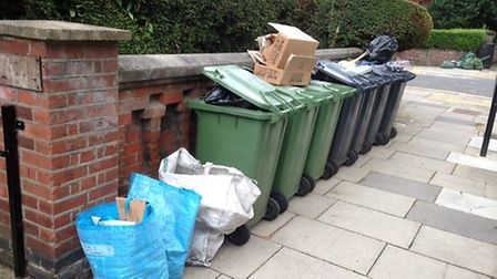 Bins lining a South Hampstead street. Picture: Peter Symonds