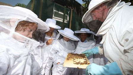Children of Jubilee Primary School, Stoke Newington, learn about bees on the Bee Awareness Day.