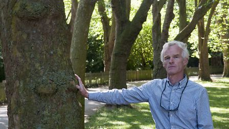 Jonathan Meares, City of London Corporation's tree manager for Hampstead Heath, pictured in 'The Cat