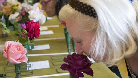 Hampstead Garden Suburb Horticultural Society autumn show. Picture: Nigel Sutton
