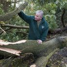 Hampstead Heath superintendent Simon Lee surveys an uprooted tree in Golders Hill Park. Picture: Nig
