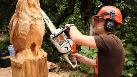 Woodcarver Luke Champman does some wood work at the funday in Abney Park.