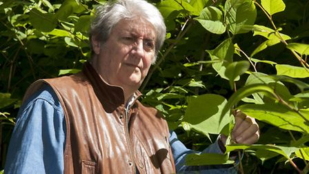 Film star Tom Conti spoke to the Ham&High about the threat of Japanese knotweed to the homes of some