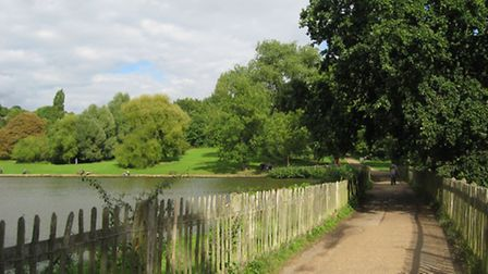 This view from the path between the Model Boating Pond and the Highgate Men's Bathing Pond is set to