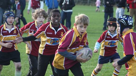 Hampstead's Under-10s in action at the Grasshoppers Festival