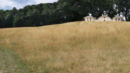 The proposed view up to the Kenwood Dairy with the copper beeches removed. Picture: English Heritage