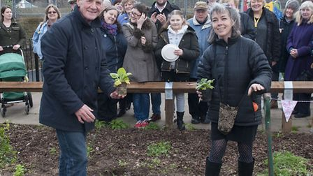 Michael Palin helps Suza Johntson planting at Lismore Circus. Picture: Nigel Sutton