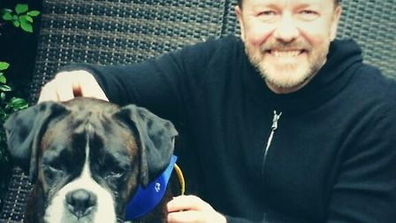 Ricky Gervais tweeted this photo posing with boxer terrier Bella. Picture: Twitter/Ricky Gervais