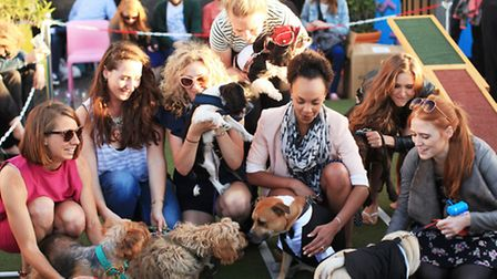 Participants at the Cannt Crufts dog show at the Queen of Hoxton's rooftop.