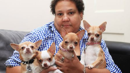 Lorraine Foster holds her Chihuahuas after recently losing one of her dogs due to an attacked by a l