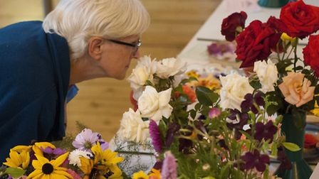 Highgate Horticultural Society Autumn show