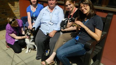 A pet therapy session at the East London NHS Foundation Trust's older adult service, The Lodge, in H