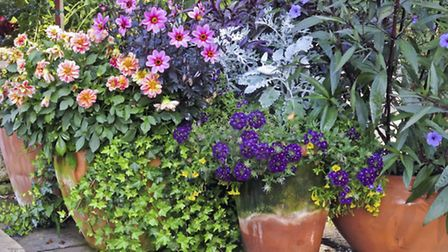 Plant pots in a garden. PA Photo/thinkstockphotos