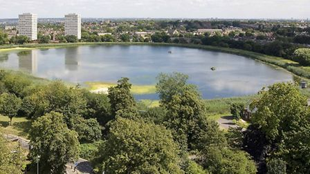 Woodberry Wetlands Site