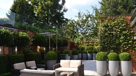 Hampstead Courtyard Garden designed by Kate Gould