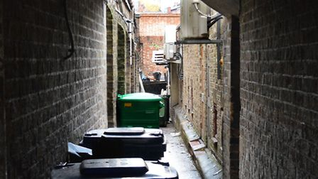 """View down """"Triffid Alley"""" nxt to Warwick Mansions, Pond St NW3"""