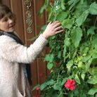 Barbara Roberts next to the plants she has been asked to remove. `
