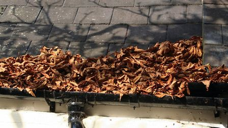 Clear gutters and drains of leaves and debris. November is a particularly good time to do this