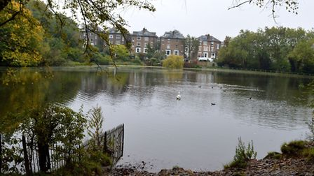 Hampstead Number 2 pond. Picture: Polly Hancock