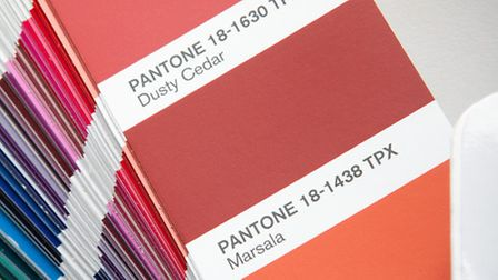 Paint chart showing Marsala, Pantone Color of the Year 2015. PA Photo/Handout