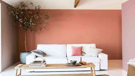 Copper blush shade seen on back feature wall, Dulux. PA Photo/Handout