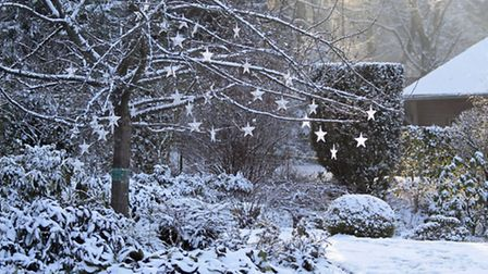 A tree with shining stars in snowy garden. PA Photo/thinkstockphotos