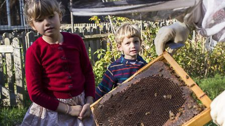 George Downing Estate Bee Project 2014. Photo © AndyAitchison.uk