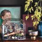 Air plant in copper pot. From The House Gardener by Isabelle Palmer, published by CICO Books (�25).
