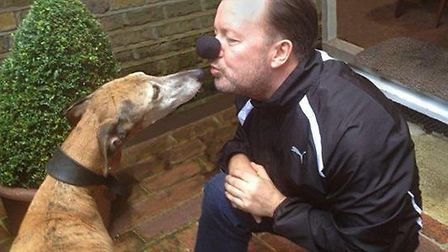 Ricky Gervais dons his wetnose with Percy the greyhound, owned by Angela and Martin Humphery in aid