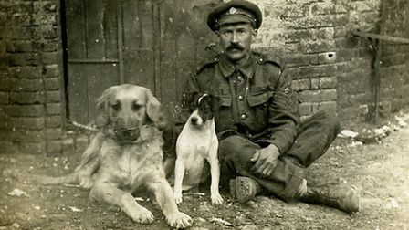 August 19, 1916... Corps pet St Bernard named Hissy and Terrier named Jack with Staff Sgt Len Nusse