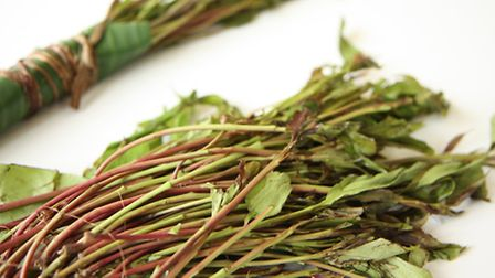 A stock photo of khat