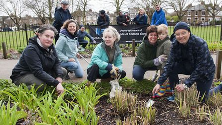 """The Friends of Fortune Green """"Love our Green Sundays"""" working on the flower beds on the Green"""