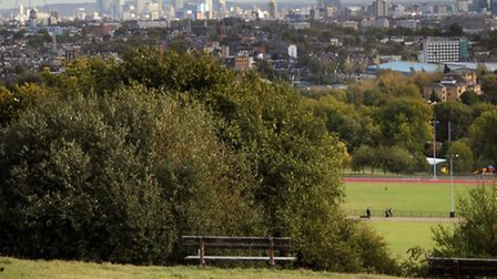 Teenagers were attacked on Parliament Hill (Pic credit: PA)