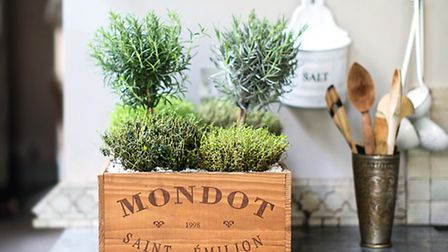 Thyme, rosemary and lavender in a vintage crate