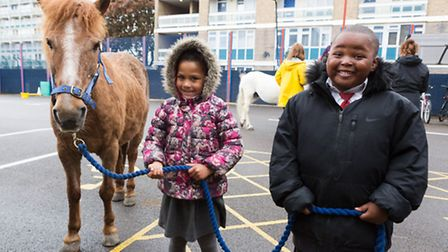 Abooka (aged 4) and Kelsey (aged 5) with Digby the pony at an equine facilitated learning session at