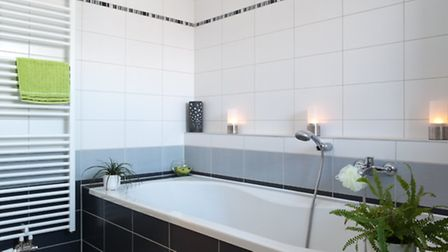 Which plants will thrive in a bathroom?