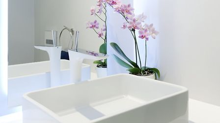 Orchids in a bathroom