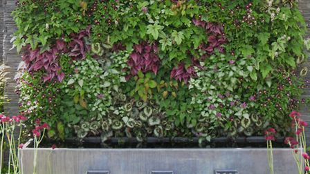 A floral green wall