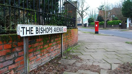 The Bishops Avenue was temporarily put on a heritage risk register. Picture: Polly Hancock