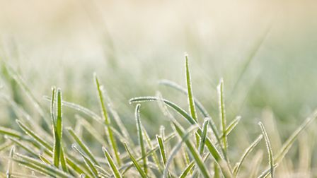 Frost on grass. PA Photo/thinkstockphotos