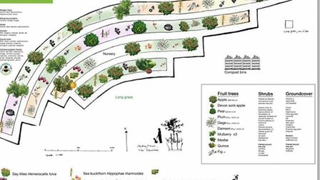 The pland for Mabley Green's edible park