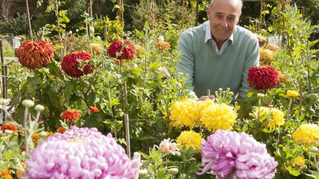Colin Roberts at his Ally Pally Allotment. Picture: Nigel Sutton
